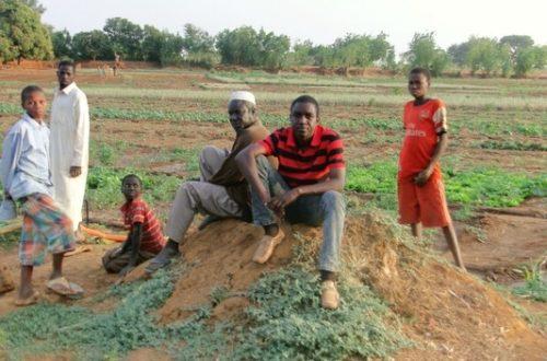 Article : Le Niger, vu par moi