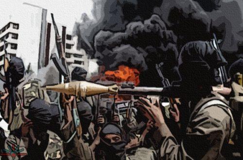 Article : Boko Haram, vu du Niger