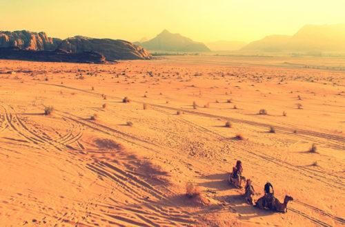 Article : Quels avenirs possibles pour la politique au Sahel(1)