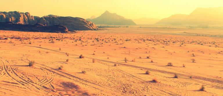 Article : Quels avenirs possibles pour la politique au Sahel(2)