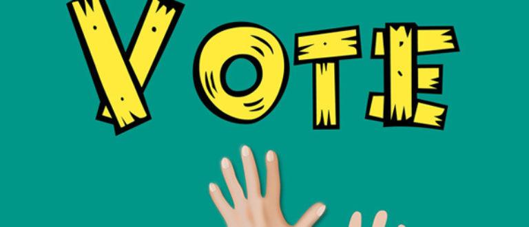 Article : Je ne ferai pas un vote contre la démocratie
