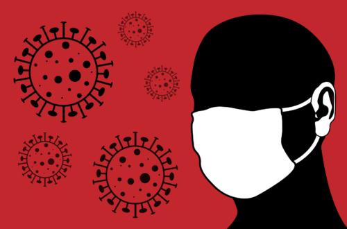 Article : Covid-19 : brève revue de la pandémie au Niger N°#0
